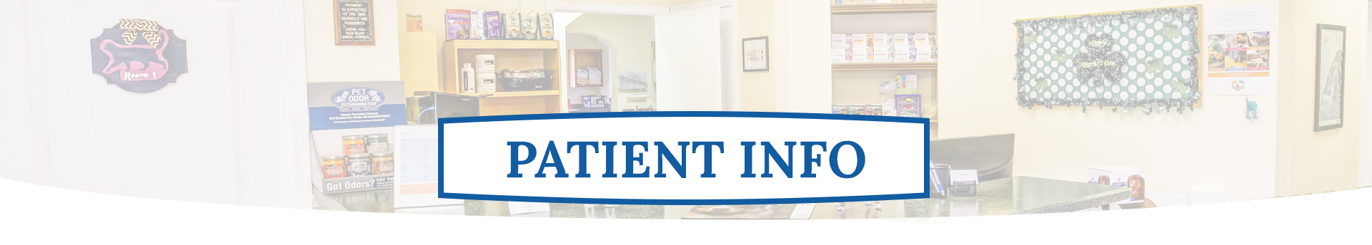 Pet Patient | Alta Bluff Animal Hospital Jacksonville FL