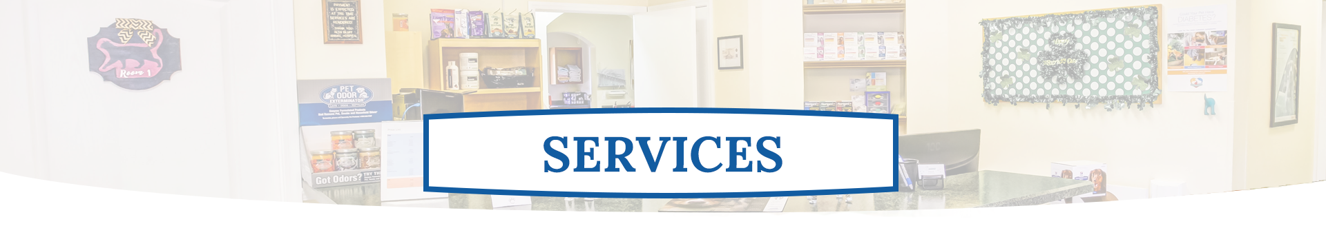 Vet Services | Alta Bluff Animal Hospital Jacksonville FL