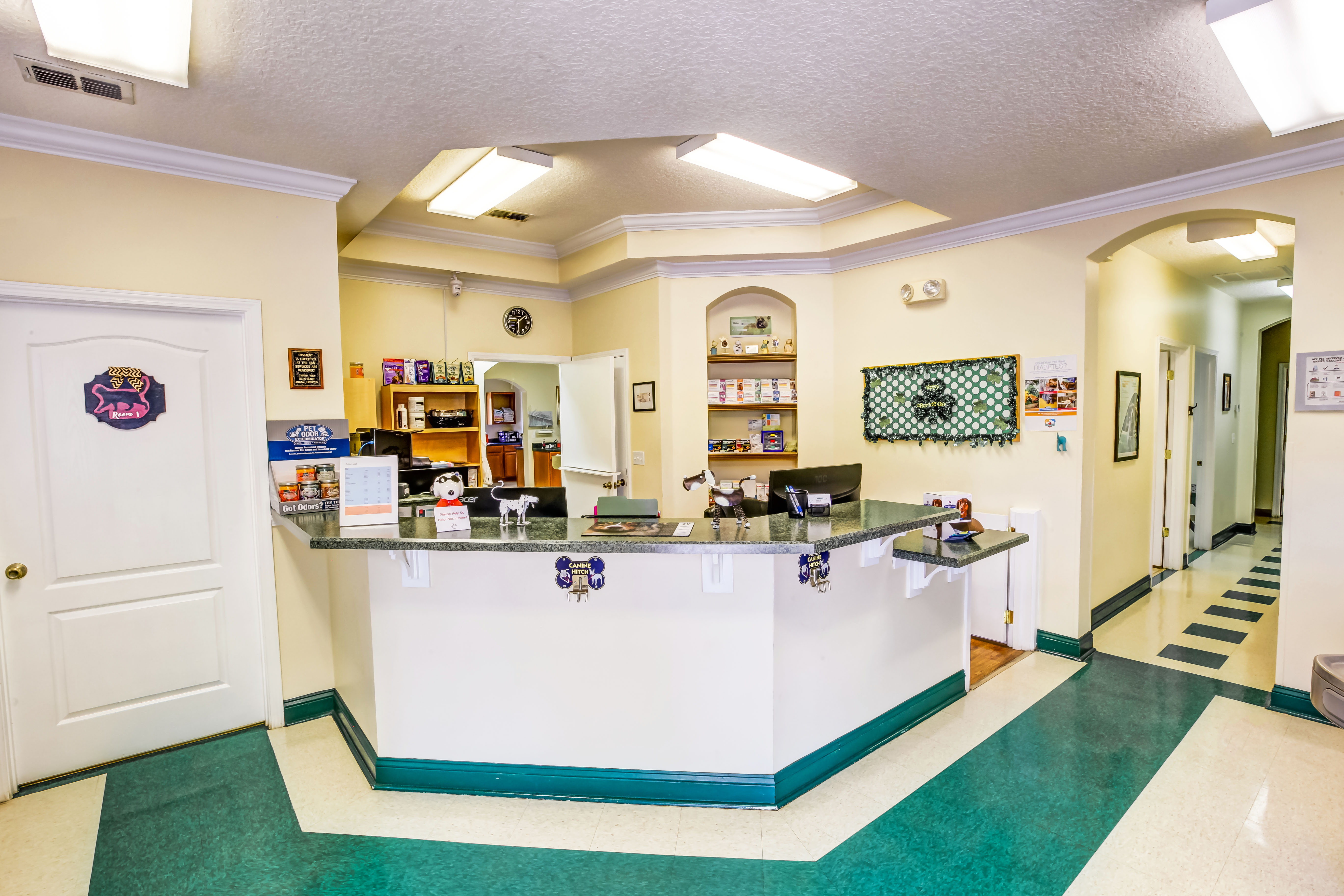Front Office | Alta Bluff Animal Hospital Jacksonville FL